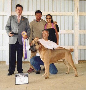 Romeo - 2004 ICCF/CCAA National Specialty BOS Winner